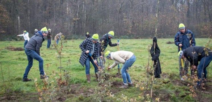 beMatrix planting trees