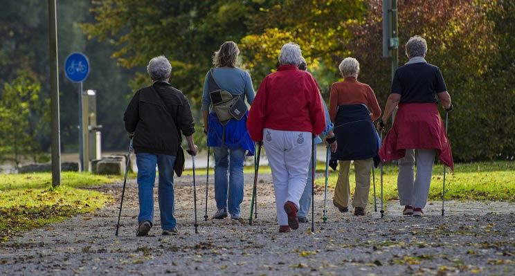 Osteoarthritis Specialists to Meet in Brussels