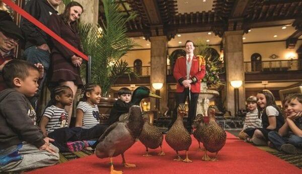 D.E.A.L. (Lodging): The Hyatt Regency Orlando History of Fowl Play: A Peabody Duck Tale