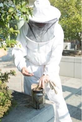 McCormick Roof garden worker