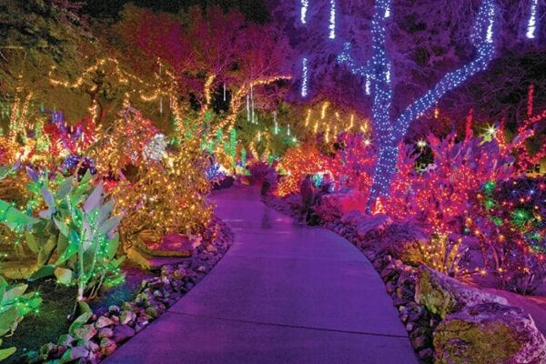 Ethel M Chocolate's Holiday Cactus Garden
